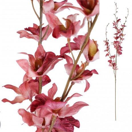 Orchid Bloem Pink Dendrobium Blossom, PTMD-0