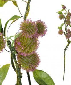 Garden bloem pink castanea s - PTMD-0