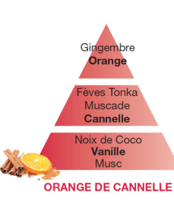 Orange Cinnamon - Orange de Cannelle - 500ml/1Ltr - Lampe Berger-5964