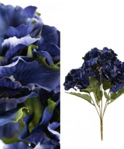Hydrangea bloem dark blue Single ball m, PTMD-0
