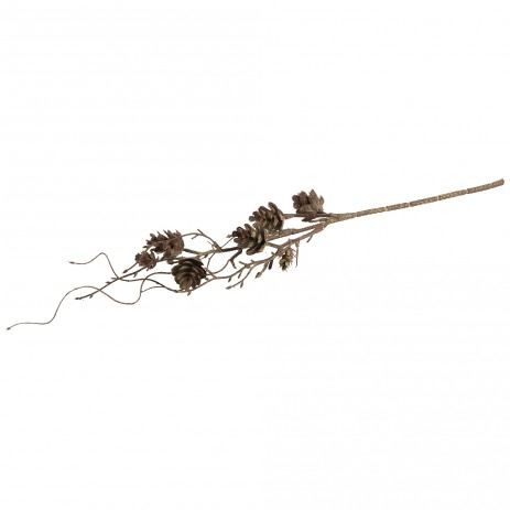 Twig plant pine cone brown, PTMD-0