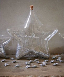 Big Star Decoration Bottle Silver - Rivièra Maison-0