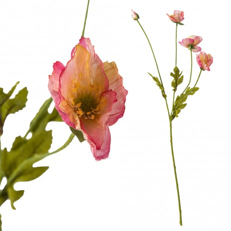Poppy bloem pink 3 flowers, PTMD-0
