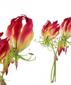 Lily bloem red Gloriosa bunch 4 flowers, PTMD-0