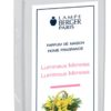 Lumineux Mimosa - Luminous Mimosa - 500 ML - Lampe Berger-0